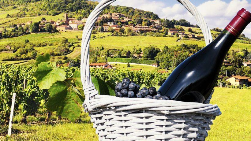 vinbourgogne1